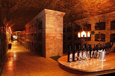Matysak Wine Cellar