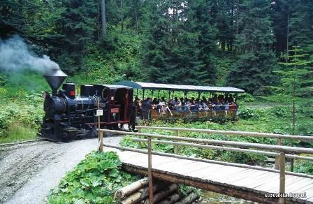 Cierny Balog forest train