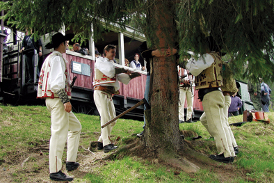 Cierny Balog forest train performance