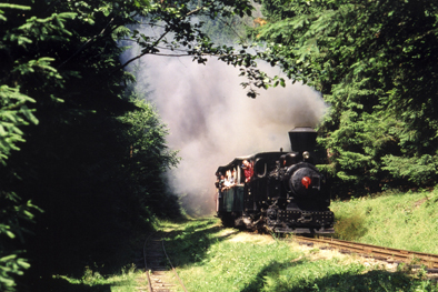 Cierny Balog forest train