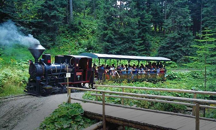Wooden railway Cierny Balog